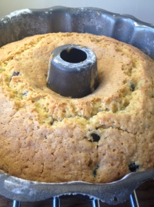 Dairy-Free Blueberry and Coconut Cake